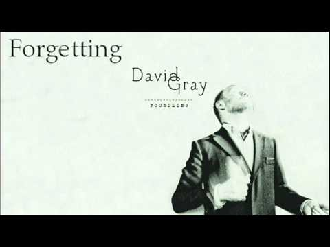 David Gray - Forgetting