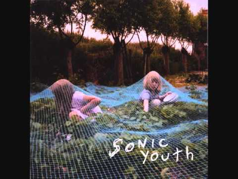 Sonic Youth - Sympathy for the Strawberry